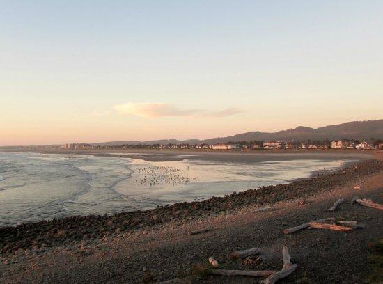 Lanai at the Cove: Looking north towards Seaside.