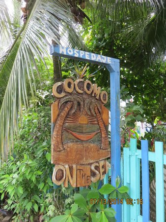 Cocomo on the Sea : front