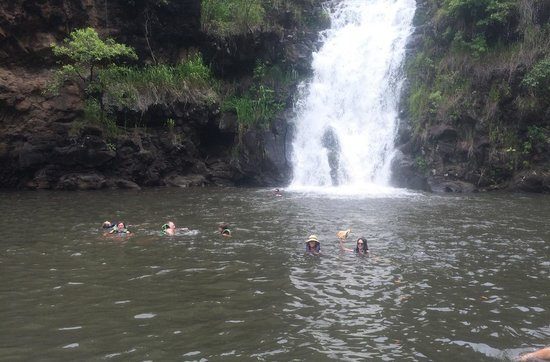 Manoa Falls: 1
