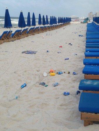 Shores of Panama Resort: Beach every morning