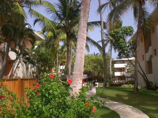 Catalonia Bavaro Beach, Casino & Golf Resort: Hotel areas