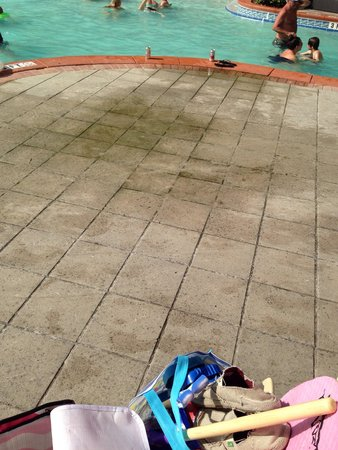 Shores of Panama Resort: Pool deck with nasty mold