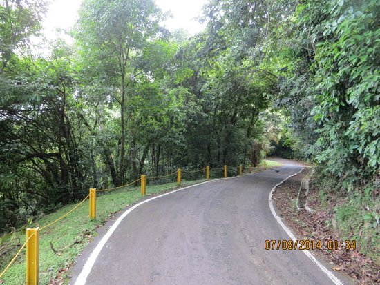 Cerro Ancón: This is the road, a walk really, not a hike