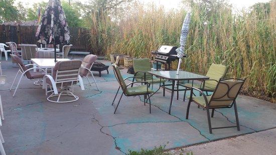 Debbie's Hide a Way : The garden area outside our door.