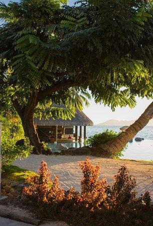 InterContinental Tahiti Resort & Spa : Smaller infinity pool and bar