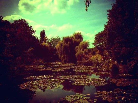 Les Jardins d'Helene : Allez un dernier petit coup de Monet pour la route ... ;)