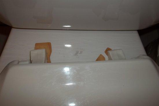 Comfort Inn: the back of the toilet