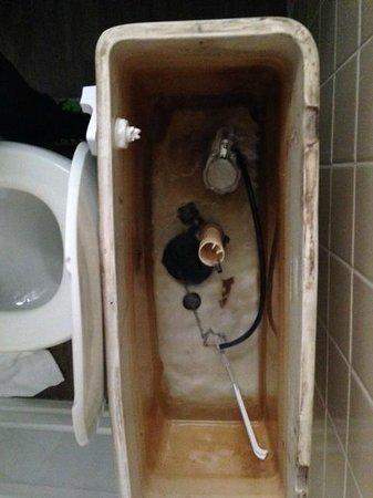 Hotel Zed : Toilet Tank