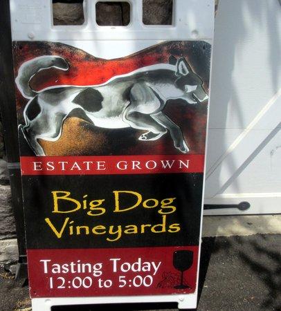 Big Dog Vineyards : Big Dog Vineyard, Milpitas, CA