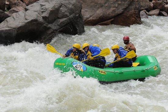 Wilderness Aware Rafting: Royal Gorge - Zack