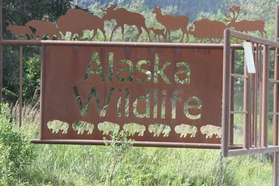 Alaska Wildlife Conservation Center: The entrance to the center.