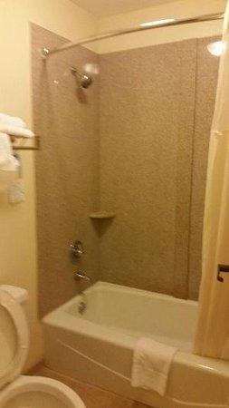 Quality Inn University : Bathroom