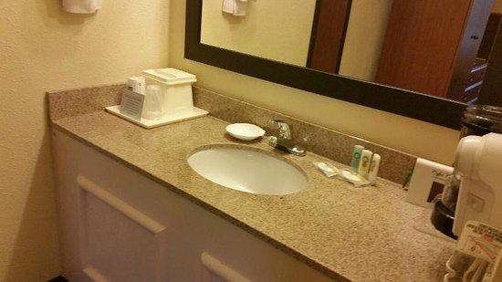 Quality Inn University : Sink - outside of bathroom