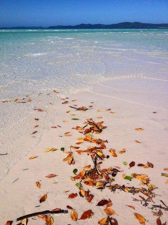 Ocean Rafting: Whitehaven Beach - Tongue Island