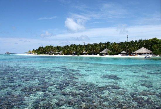 Kihaa Maldives: 5
