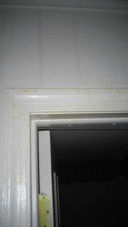 Sky View Manor Motel: piss like stain on door