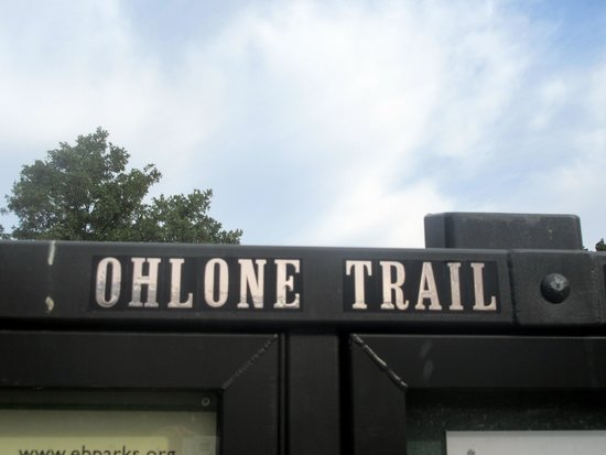 Ohlone Wilderness Trail