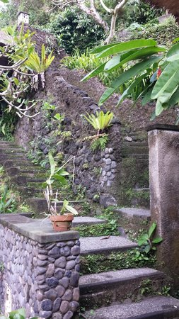 UBUD CLIFF VILLAS: Steps down to River Valley Suite