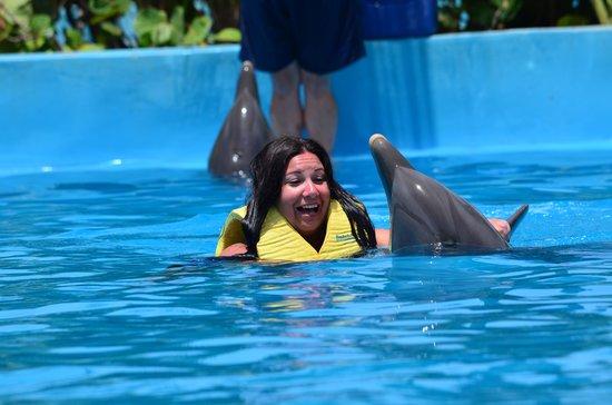 Dolphinaris Riviera Maya Park: foot push