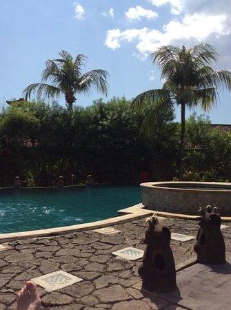 Nirwana Water Garden: piscine