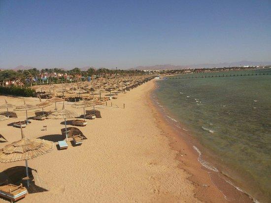 Amwaj Oyoun Hotel & Resort : Amwaj beach