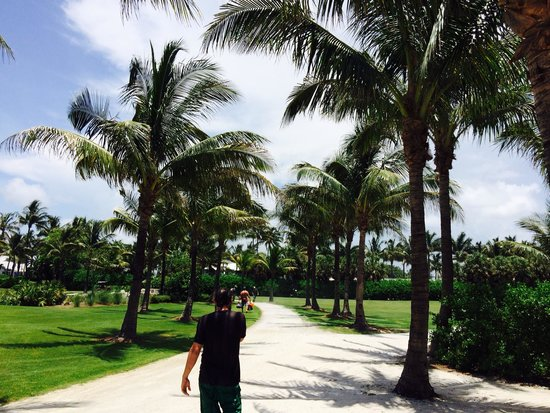 South Seas Island Resort: The walk from room to beach