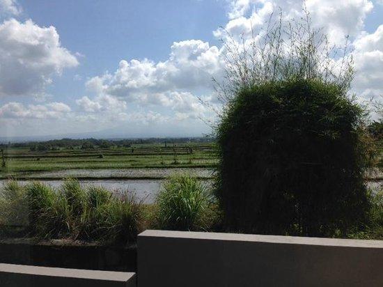 Soori Bali: Terrace view