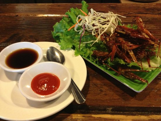 Crispy grasshopper picture of rice thai cookery for Authentic thai cuisine portland or