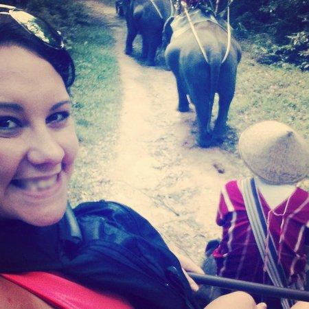 Siam Safari: Loving it