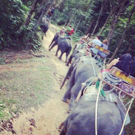 Siam Safari: Off we go!