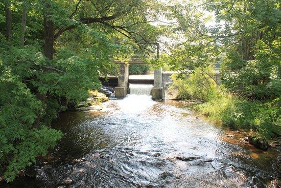 Inglis Falls Dam