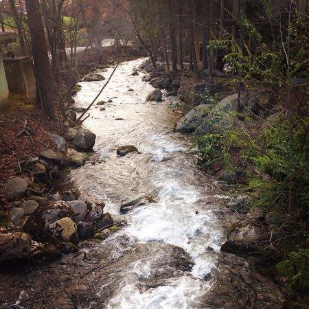 Tree Tops Resort : Beautiful creek that runs along the resort