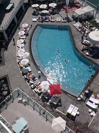Mondrian South Beach Hotel: pool from my balcony