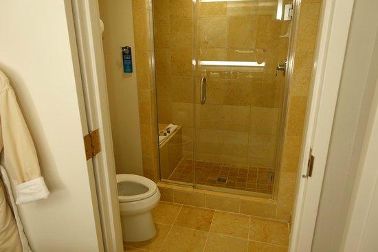 Gaylord Palms Resort & Convention Center : Bathroom
