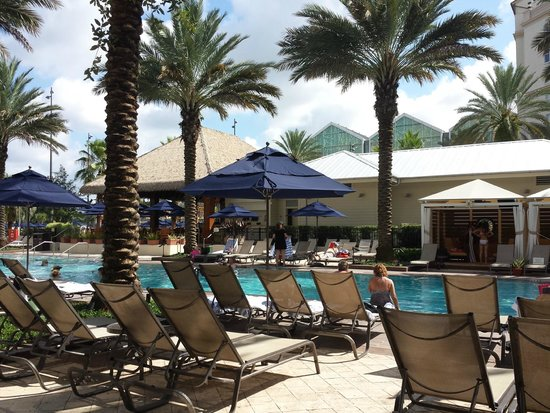 Gaylord Palms Resort & Convention Center : Pool