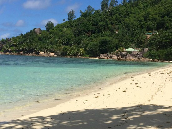 Kempinski Seychelles Resort: laying out on the beach which i had all to myself on most days