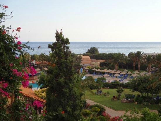 Anissa Beach Hotel : вид из окна