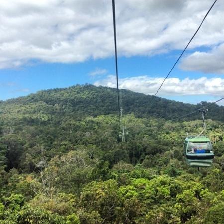 Kuranda, Coach, and Skyrail Tour: skyrail down