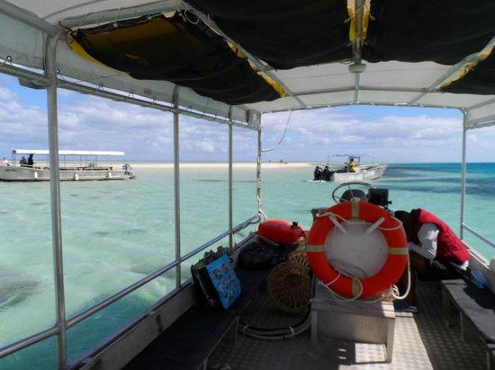 Lomani Island Resort: snorkelling trip to Sandbar