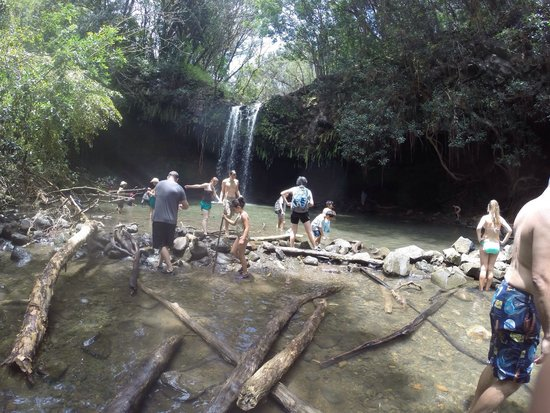 Hike Maui: Hiking trail to Twin falls : August 1, 2014. Amazing experience