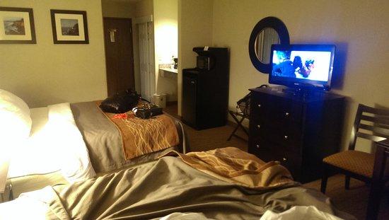 Comfort Inn : room 115, 2 queens