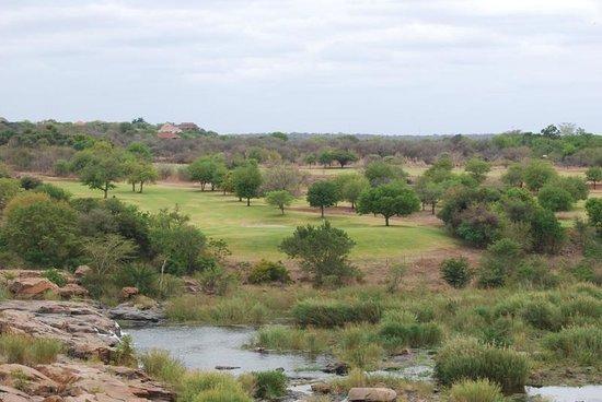 Kambaku Komatipoort Golf Club: Golf course view