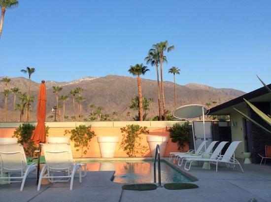 Century Palm Springs : pool
