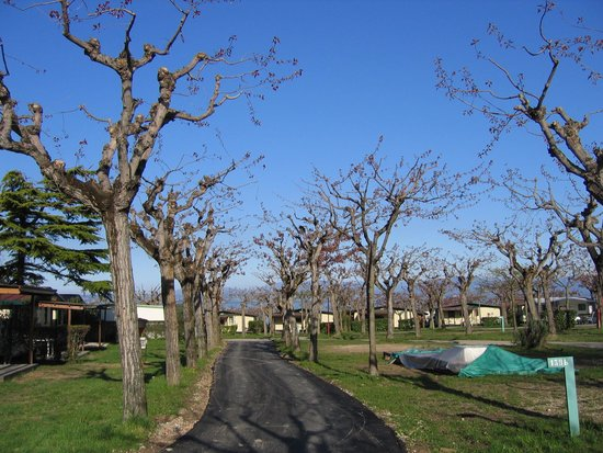 Camping Belvedere: Anlage