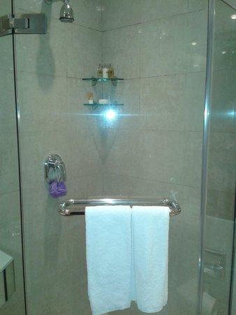 M Hotel Singapore: Too small.