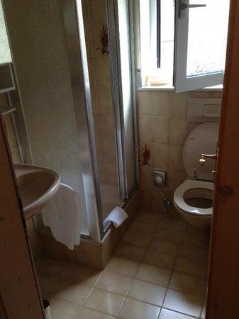Hotel La Ginabelle: Petite salle de bain