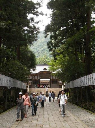 Yahiko Shrine: 本殿に向かってます。