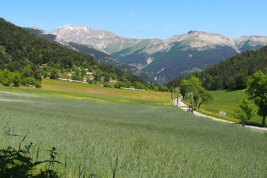 Thorame-Haute, Francia: VUE DE LA TERRASSE