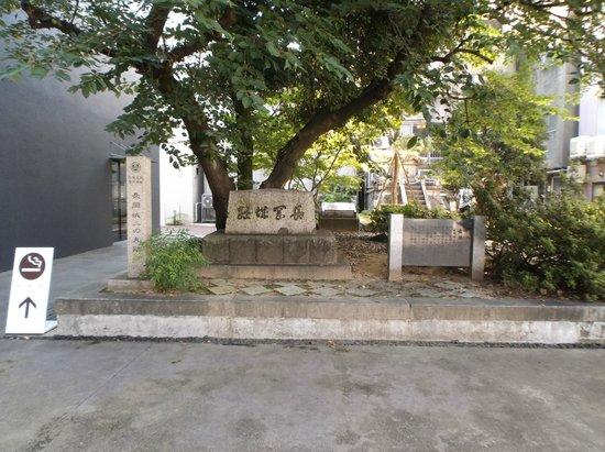 Ao-re Nagaoka