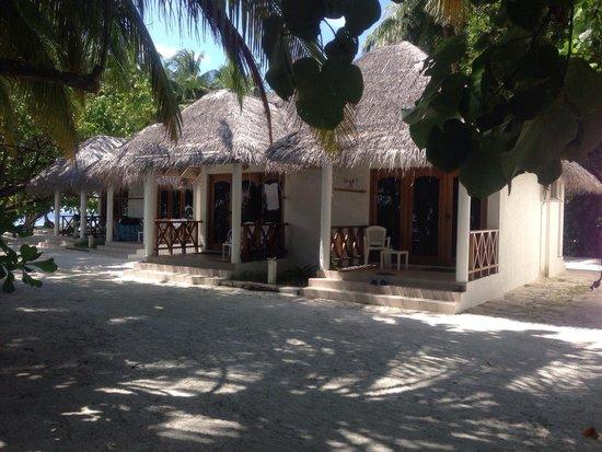 Fihalhohi Island Resort: comfort 23/24